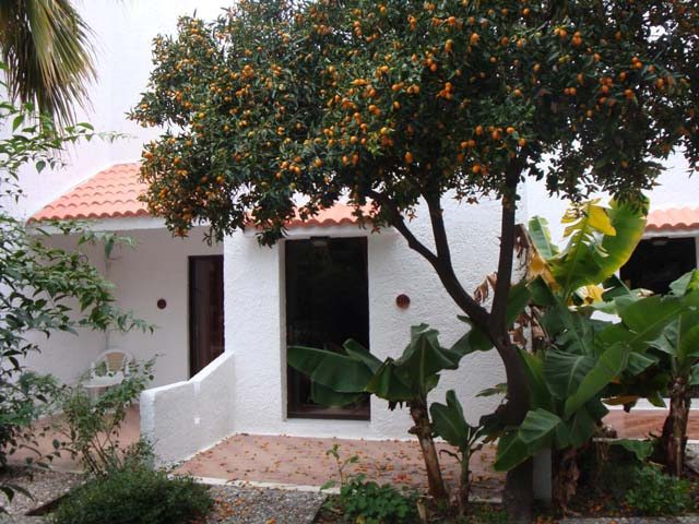 Oasis Hotel & Bungalows: