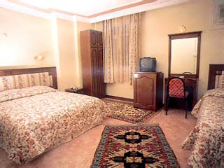 Ambassador Hotel: Image3