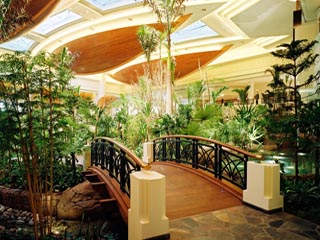 Atrium Bridge