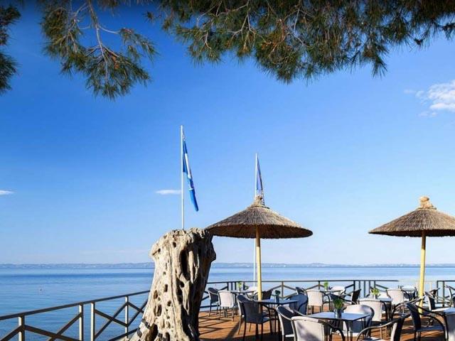 Blue Dolphin Hotel:
