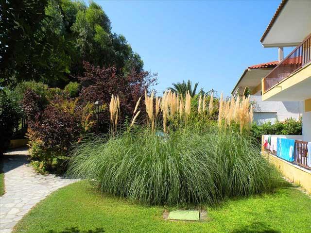 Ioli Apartments Fourka Beach -
