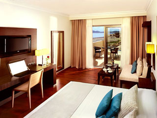 Elysium Resort & Spa: Guestroom