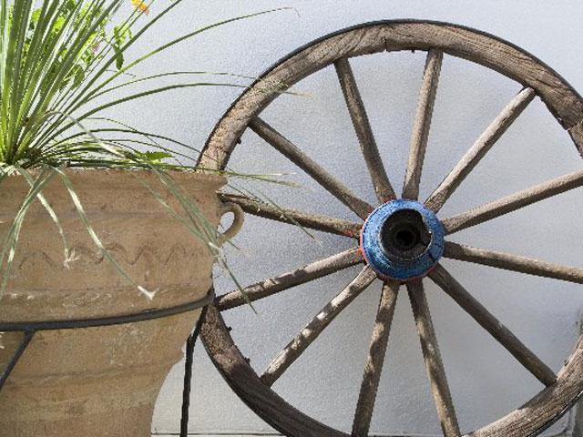 Paros Eden Park Hotel: Garden Detail