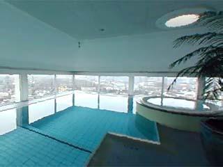 Swissotel zurich luxury hotels resorts in zurich zurich canton switzerland - Oerlikon swimming pool ...