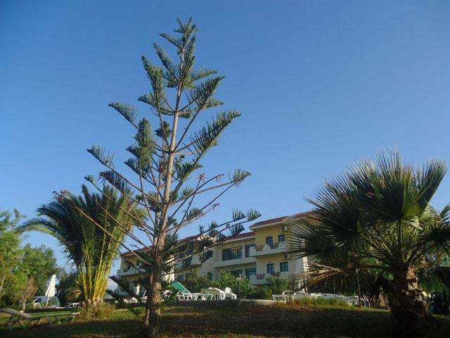 Portokali Hotel Apts