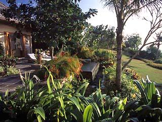 The Ritz-Carlton Villas & SpaImage3