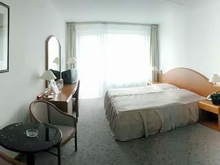 Voronez I HotelSuperior Double Room