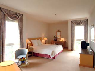 Hilton International Abu Dhabi: Room
