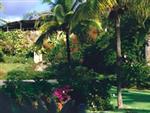 Resort Grounds & Sugar Mill Ruins