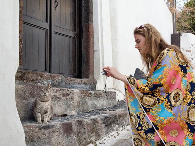 Thermes Luxury Villas: Cat