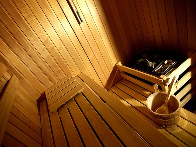 Sava Grand Hotel Primus - Sauna