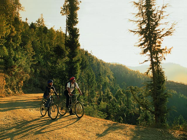 Wildflower Hall In The Himalayas - Bike Path