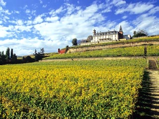 Le Chateau d'Isenbourg